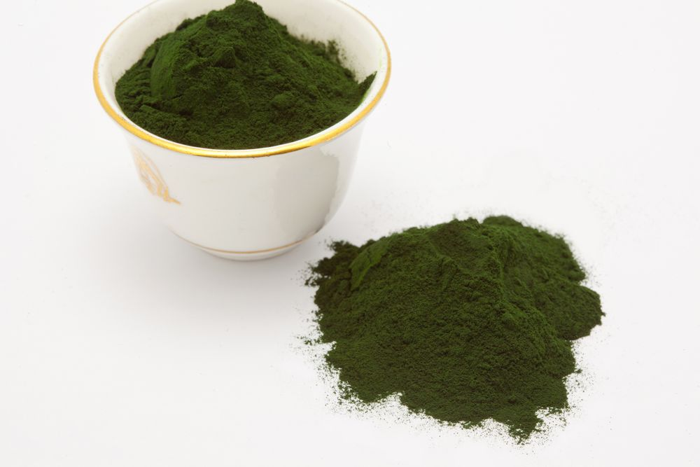 Chlorella_Small