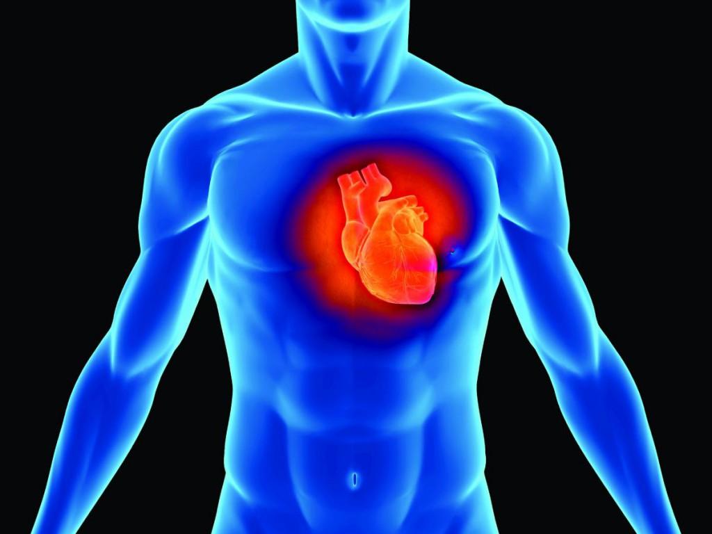 corazón-1024x768