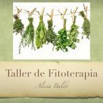 Taller fitoterapia_EULEN