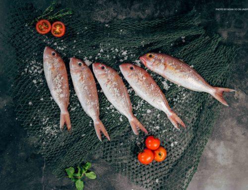 Pescado de otoño
